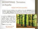 ecosistemas terrestres en espa a1