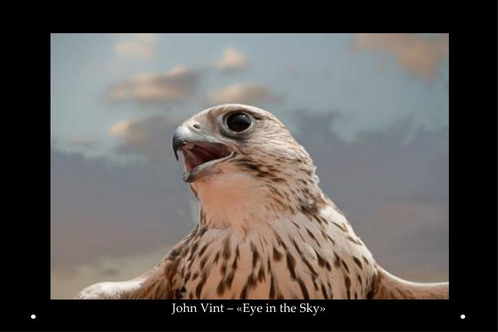John Vint – «Eye in the Sky»
