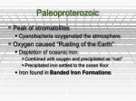 paleoproterozoic