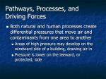 pathways processes and driving forces1