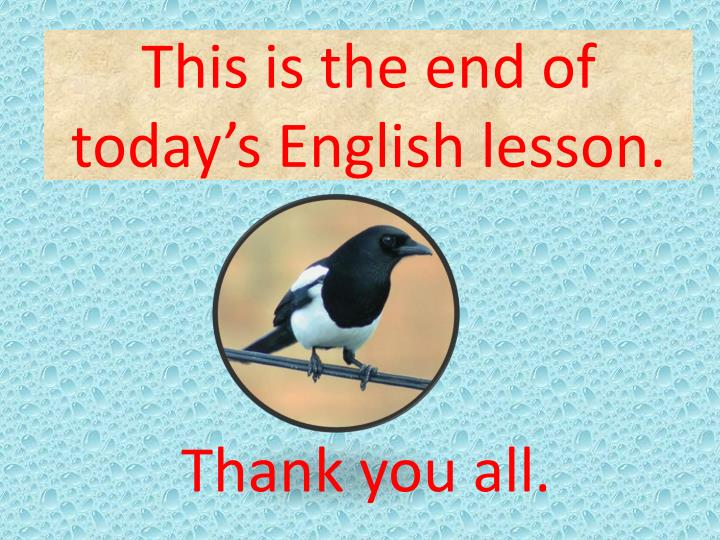 This is the end of today's English lesson.