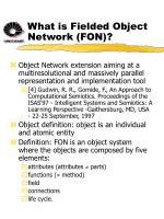what is fielded object network fon