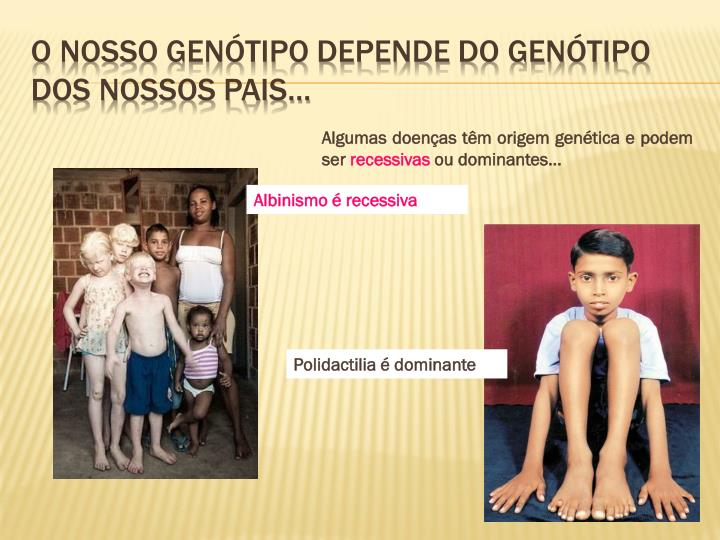 O nosso genótipo depende do genótipo dos nossos pais…
