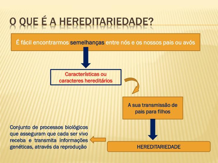 O que é a hereditariedade?