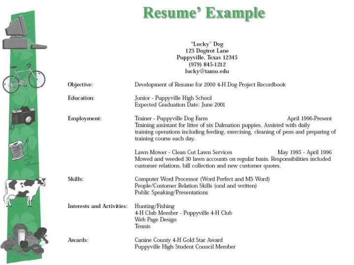 Resume' Example