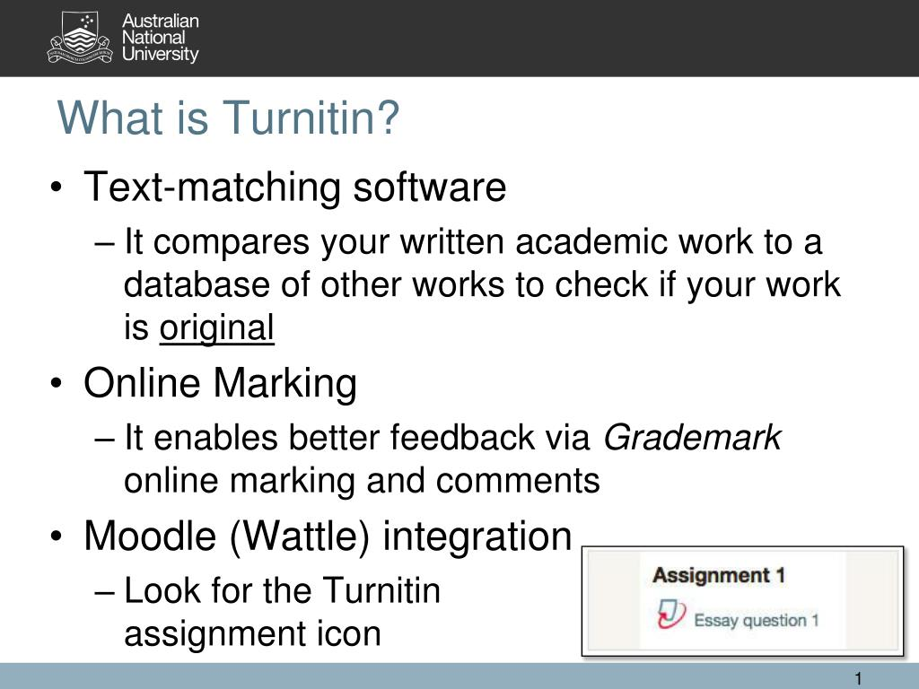 does turnitin really work