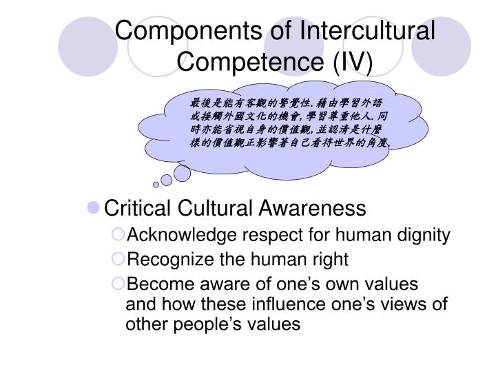 Components of Intercultural Competence (IV)