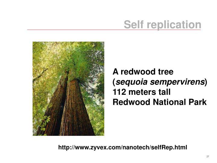Self replication