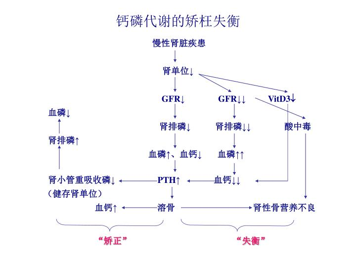 钙磷代谢的矫枉失衡