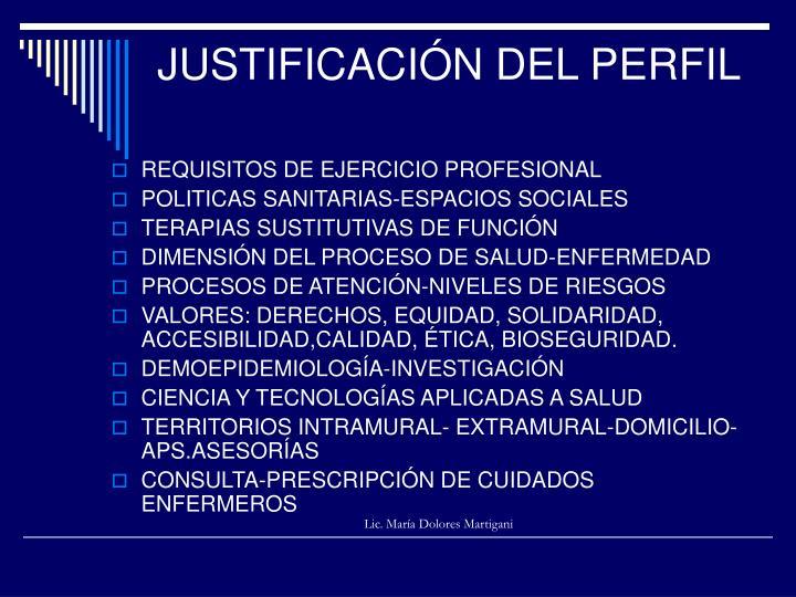 JUSTIFICACIÓN DEL PERFIL
