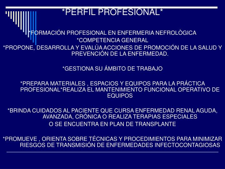*PERFIL PROFESIONAL*
