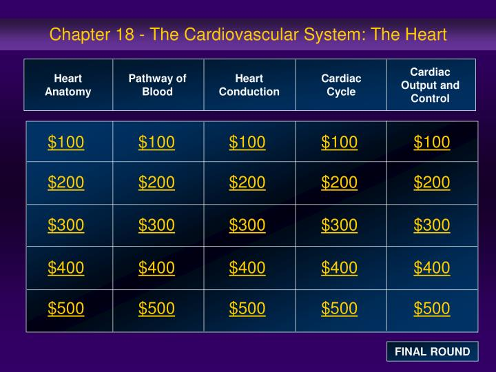 chapter 18 the cardiovascular system the heart n.