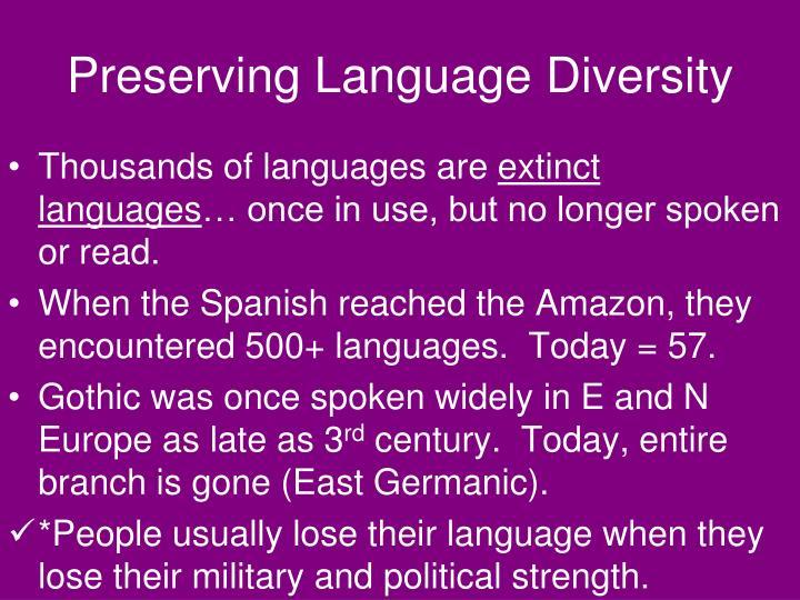 Preserving Language Diversity