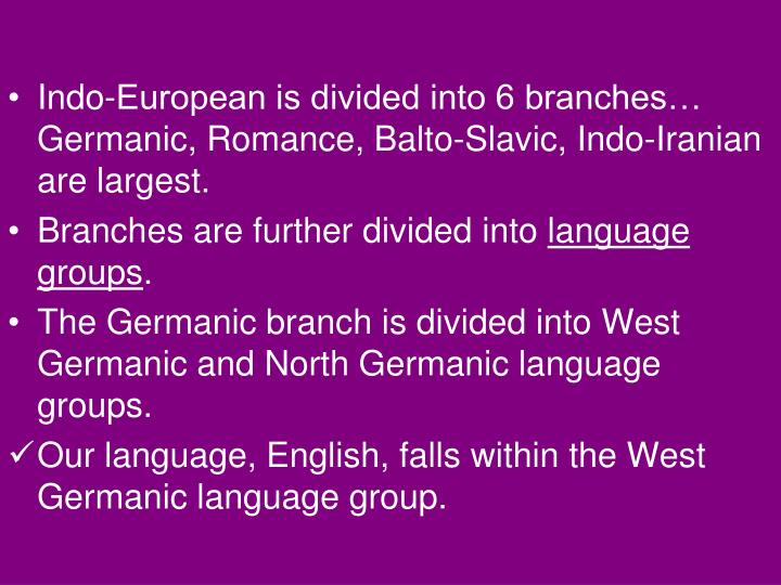 Indo-European is divided into 6 branches… Germanic, Romance, Balto-Slavic, Indo-Iranian are largest.