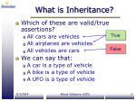 what is inheritance1