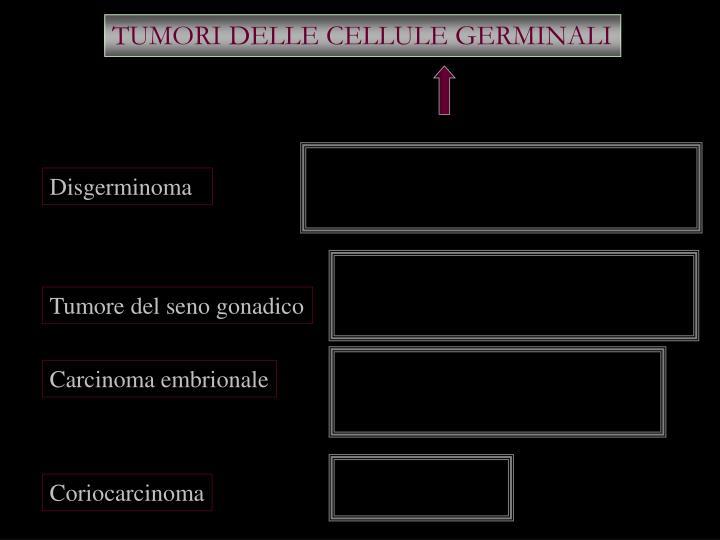 TUMORI DELLE CELLULE GERMINALI