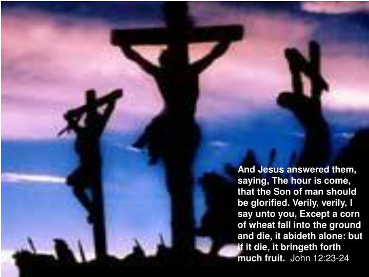 And Jesus answered them, saying, The hour is come, that the Son of man should be glorified. Verily, verily, I say unto you, Except a corn of wheat fall into the ground and die, it abideth alone: but if it die, it bringeth forth much fruit.