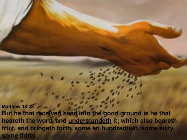 Matthew 13:23