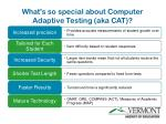 what s so special about computer adaptive testing aka cat