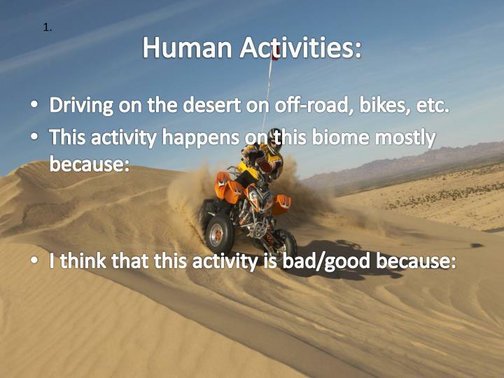 Human Activities: