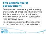 the experience of bereavement