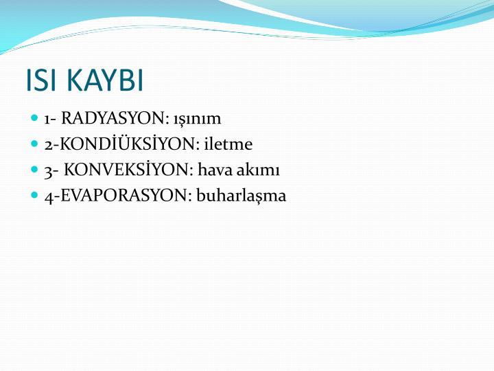 ISI KAYBI