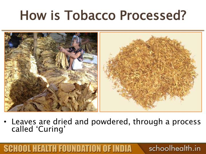 How is tobacco processed