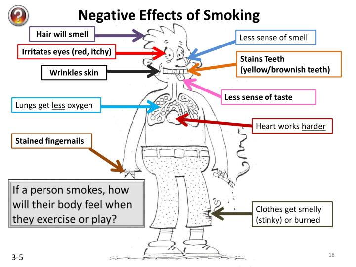 smoking and the effects on the heart Cigarette smoking is perhaps the most commonly known and well-researched cause of heart complications among these three types of smoking click here to find out exactly how cigarettes affect their users' cardiovascular systems.