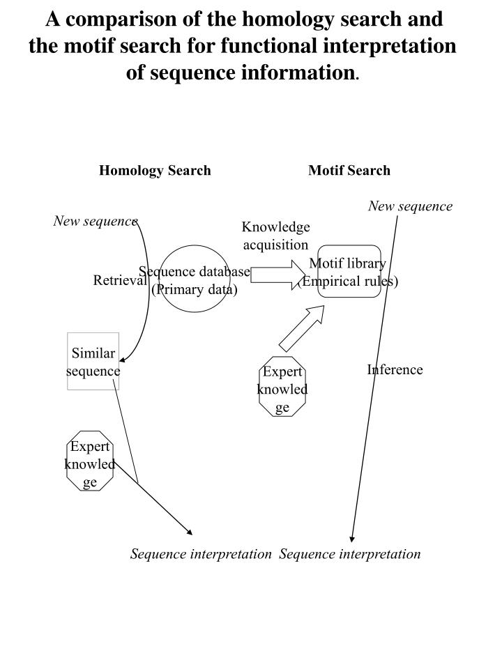 A comparison of the homology search and the motif search for functional interpretation of sequence information