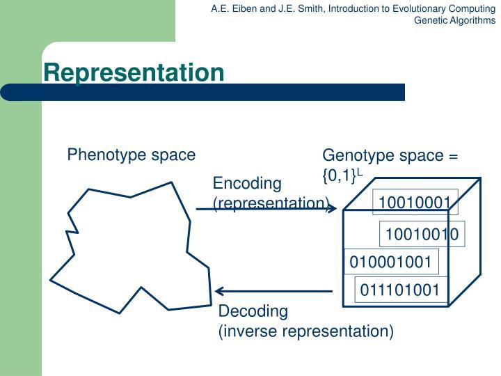 Phenotype space