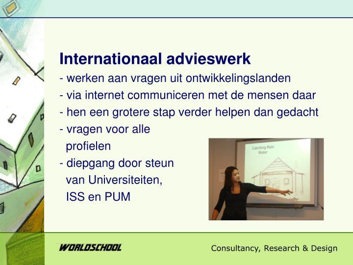 Internationaal advieswerk