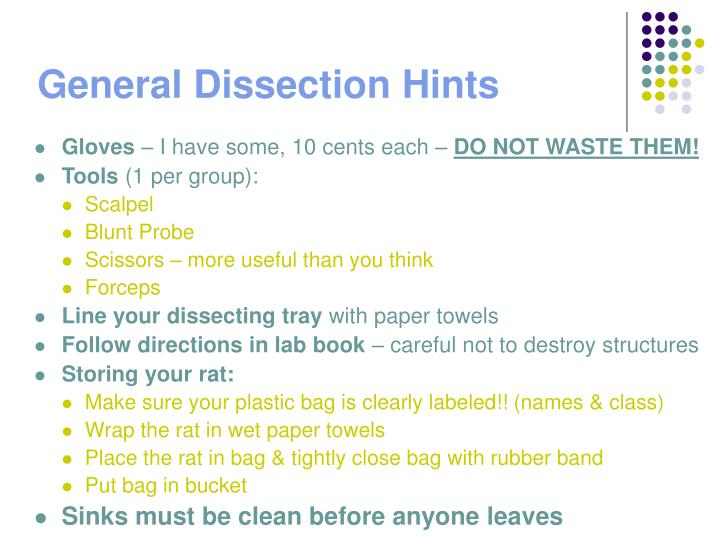 General dissection hints