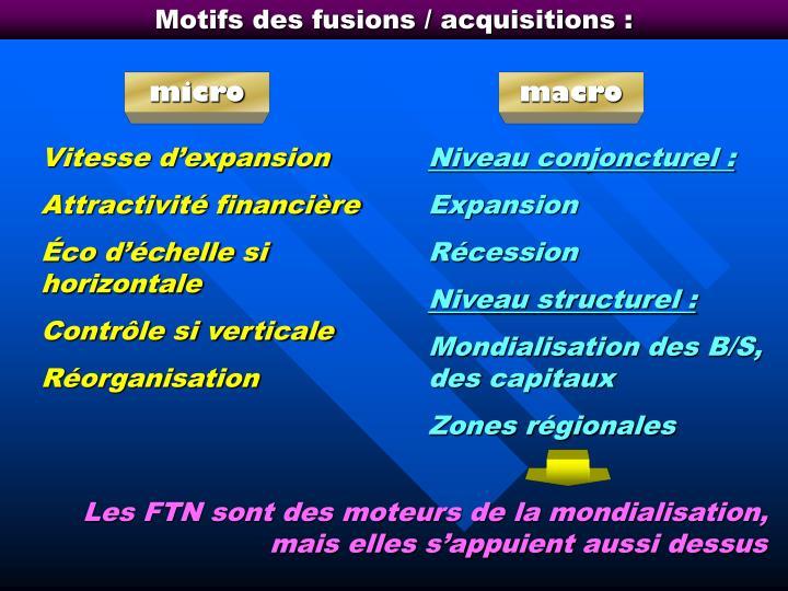 Motifs des fusions / acquisitions :