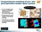 computational modeling of pre and post operative lumbar spine system