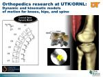 orthopedics research at utk ornl dynamic and kinematic models of motion for knees hips and spine