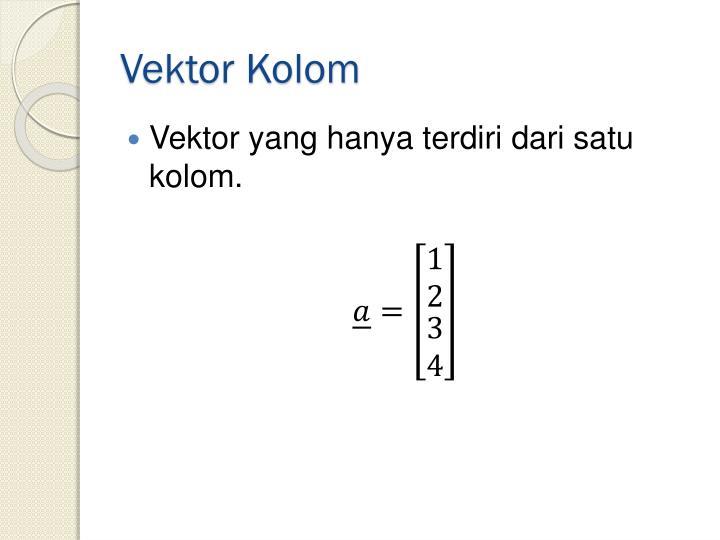 Vektor Kolom