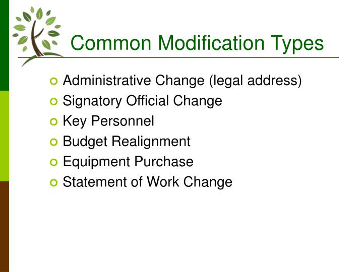 Common Modification Types