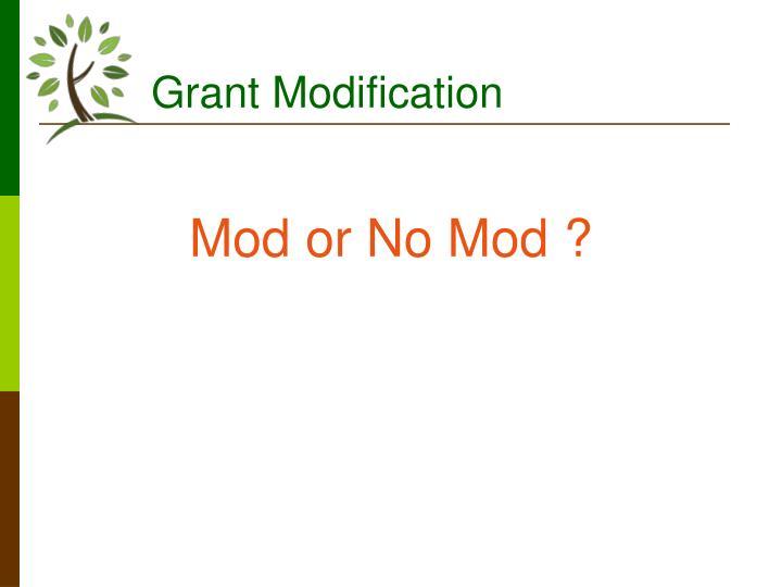 Grant Modification