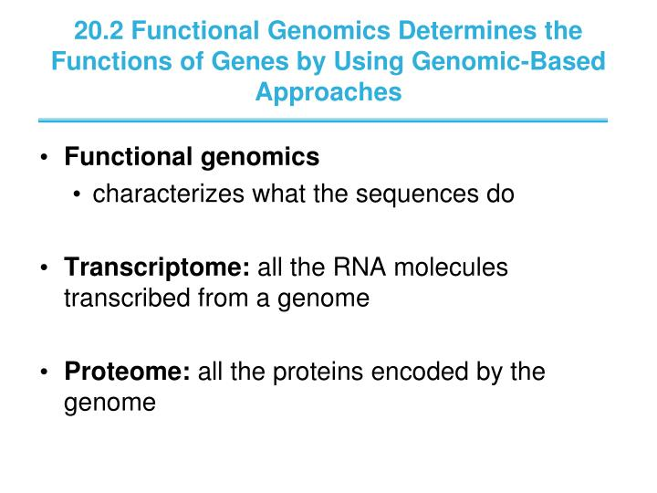 20.2 Functional Genomics Determines the Functions of Genes by Using Genomic-Based Approaches