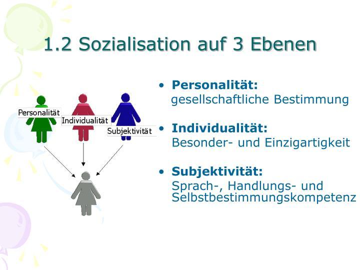 1.2 Sozialisation auf 3 Ebenen