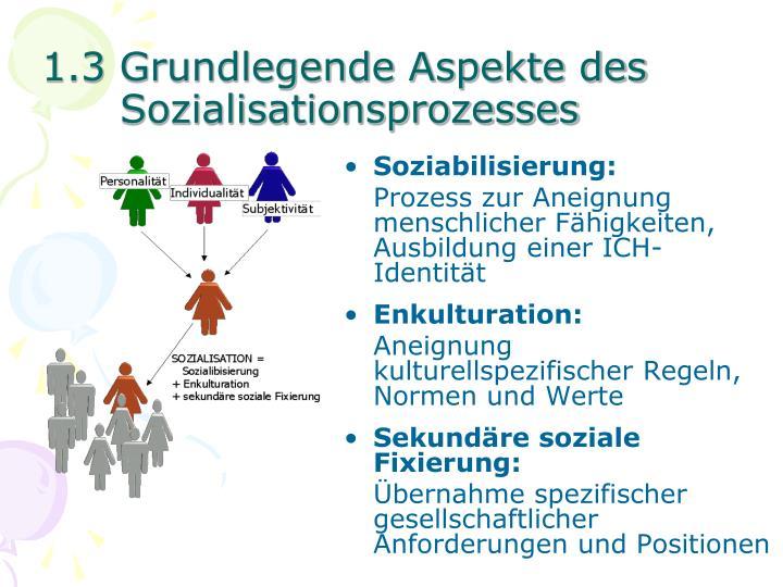 1.3 Grundlegende Aspekte des Sozialisationsprozesses