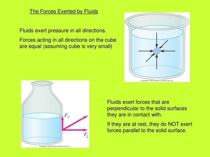 The Forces Exerted by Fluids