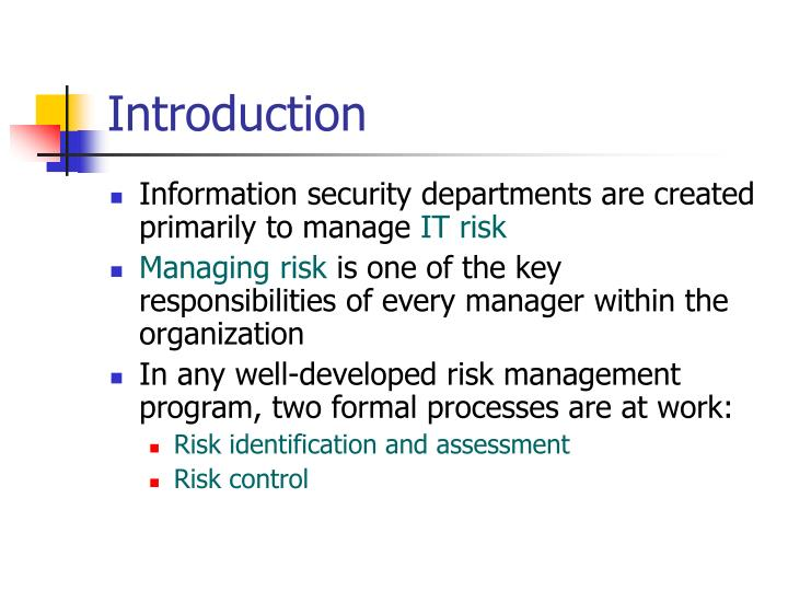 it security manager roles and responsibilities