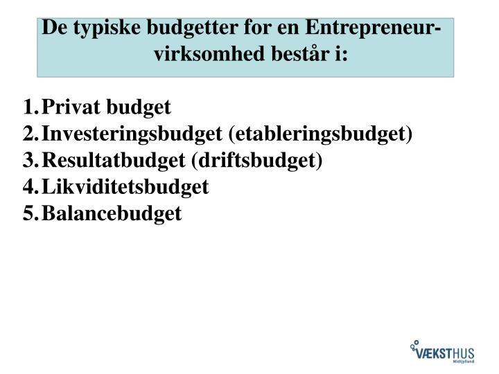 De typiske budgetter for en Entrepreneur- virksomhed består i: