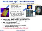 manycore chips the future is here