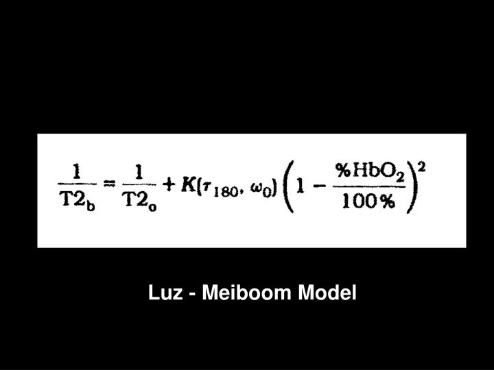 Luz - Meiboom Model