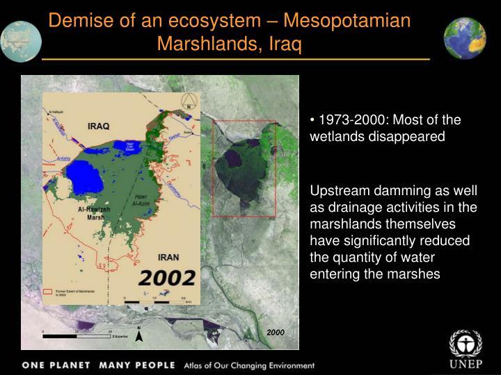 Demise of an ecosystem – Mesopotamian Marshlands, Iraq
