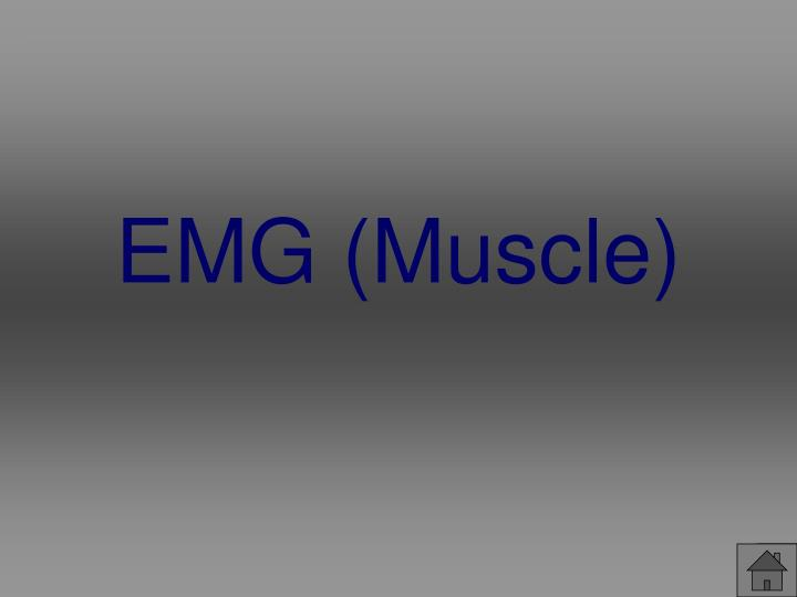 EMG (Muscle)