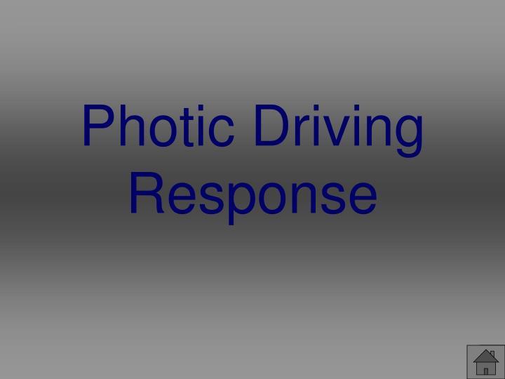 Photic Driving Response
