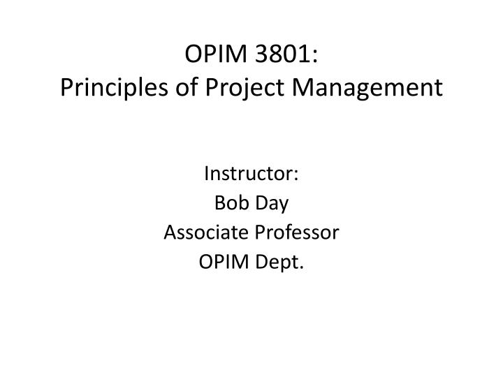 opim 3801 principles of project management n.